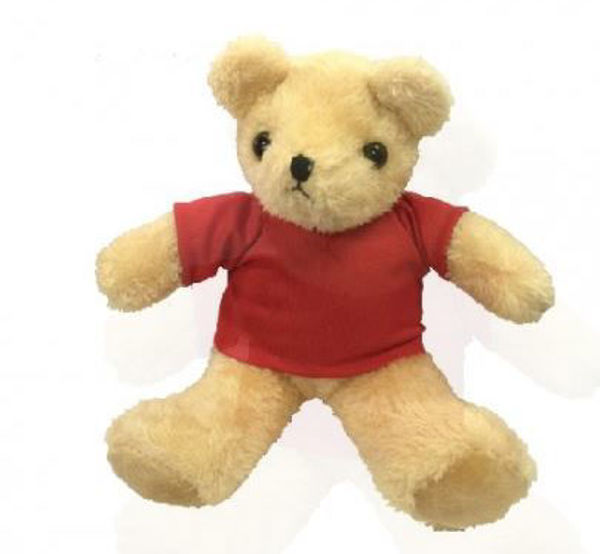 Picture of 25cm Teddy Bear