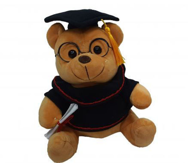 Picture of 20cm Brown Graduation Bear