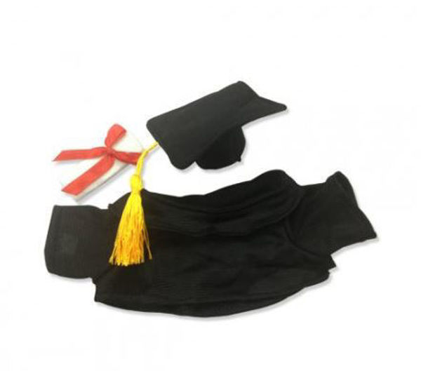 Picture of Graduation Accessories